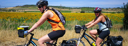 camino touring bike rental