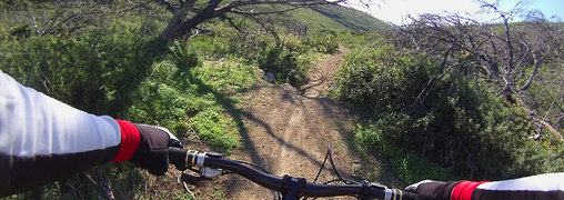 singletrack mtb tour in sintra
